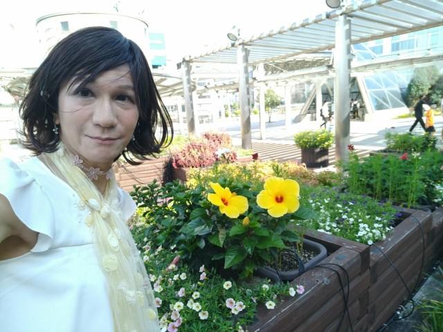 f:id:hikarireinagatsuki:20200907184538j:image