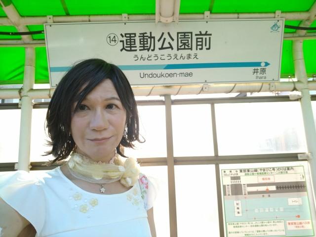 f:id:hikarireinagatsuki:20200908010810j:image