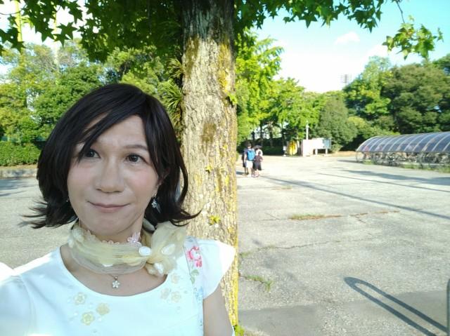 f:id:hikarireinagatsuki:20200908010829j:image