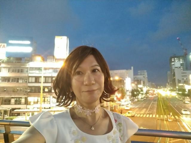 f:id:hikarireinagatsuki:20200908011449j:plain