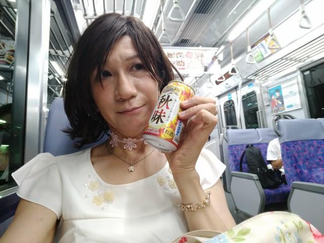 f:id:hikarireinagatsuki:20200908011543j:plain