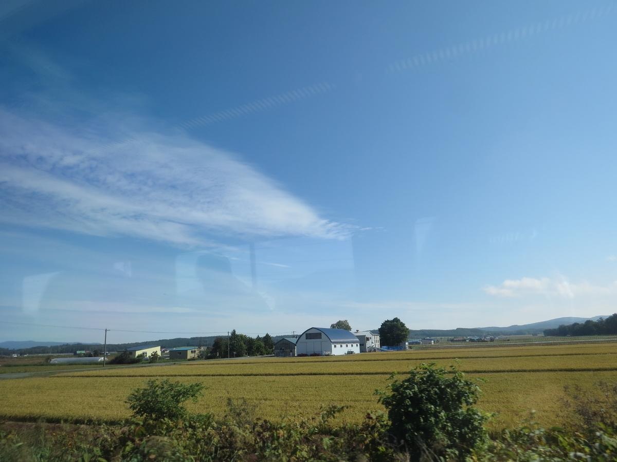 f:id:hikarireinagatsuki:20201003003717j:plain