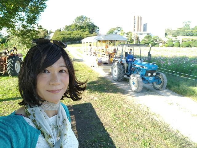 f:id:hikarireinagatsuki:20201027081912j:image
