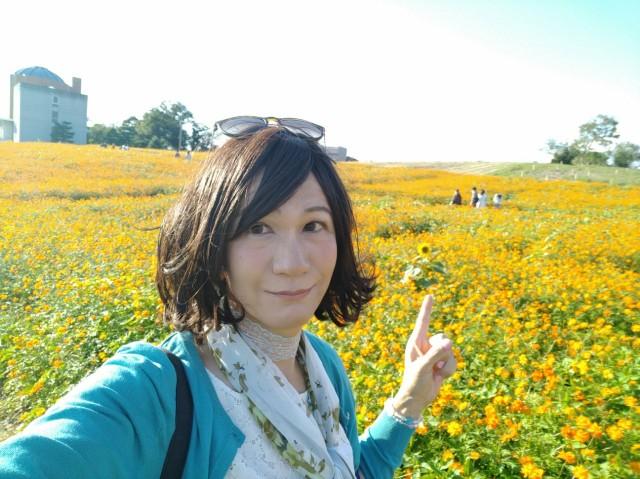 f:id:hikarireinagatsuki:20201027082453j:image
