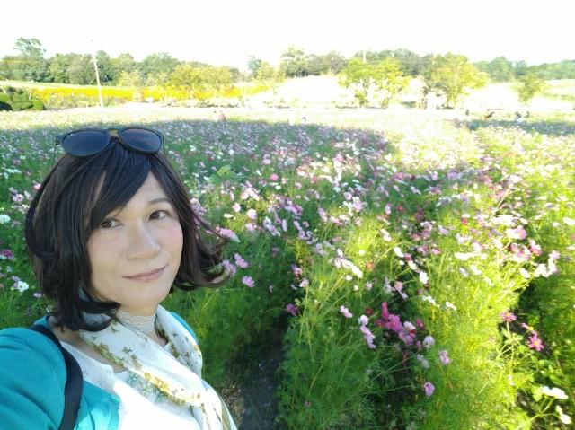 f:id:hikarireinagatsuki:20201027082517j:image