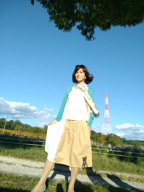 f:id:hikarireinagatsuki:20201027082536j:image