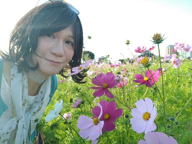 f:id:hikarireinagatsuki:20201027131040j:image
