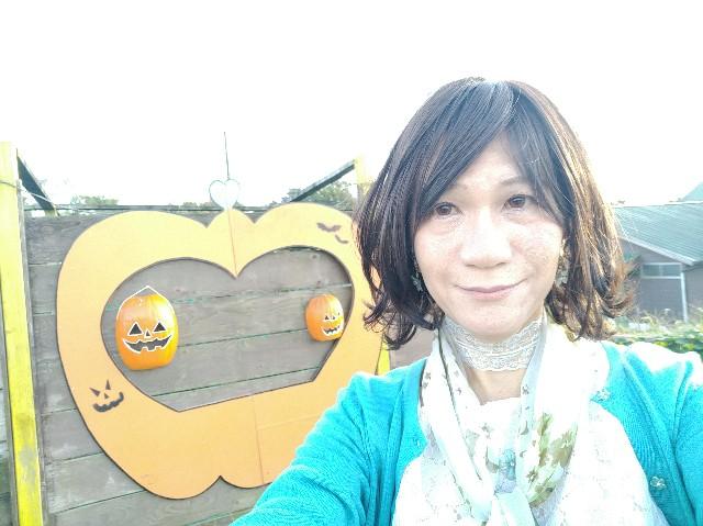 f:id:hikarireinagatsuki:20201027131223j:image