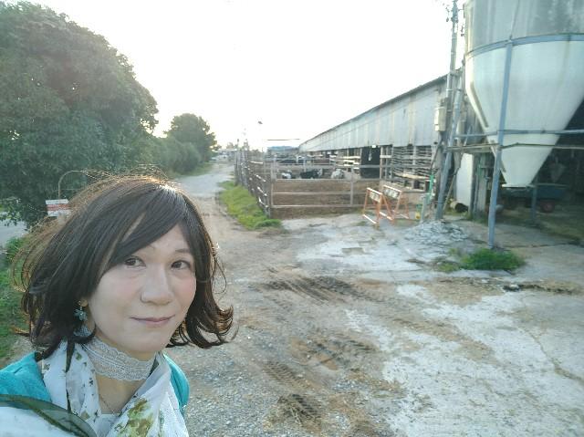 f:id:hikarireinagatsuki:20201027131243j:image