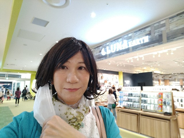 f:id:hikarireinagatsuki:20201027132112j:image