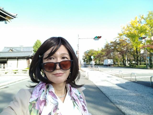f:id:hikarireinagatsuki:20201104081849j:image