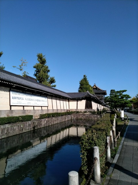 f:id:hikarireinagatsuki:20201104082137j:image