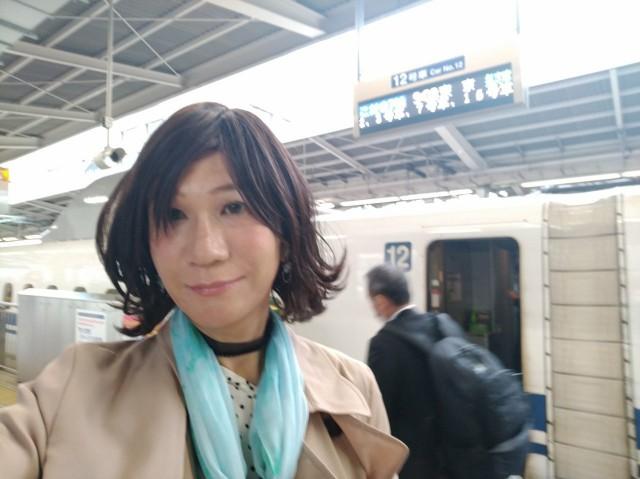f:id:hikarireinagatsuki:20201123095851j:image