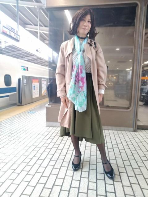f:id:hikarireinagatsuki:20201123111421j:image