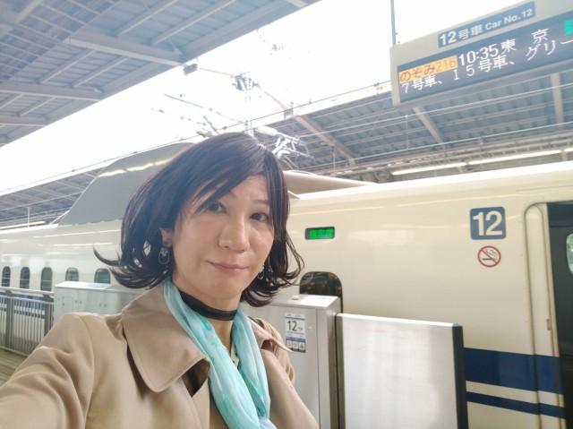 f:id:hikarireinagatsuki:20201123111521j:image