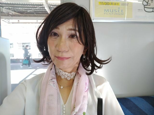 f:id:hikarireinagatsuki:20201123112437j:image