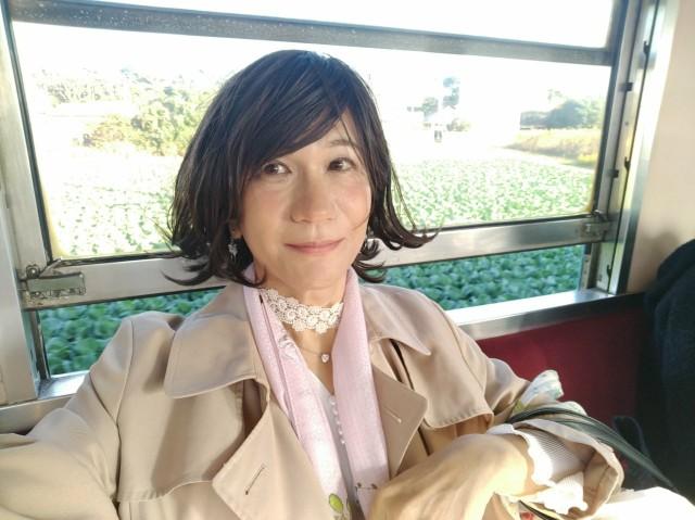 f:id:hikarireinagatsuki:20201123115214j:image