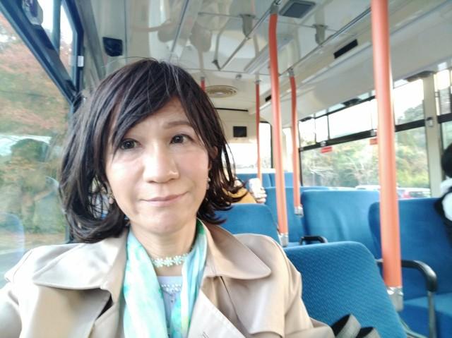 f:id:hikarireinagatsuki:20201123122803j:image