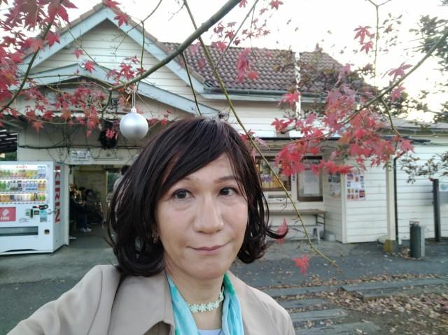 f:id:hikarireinagatsuki:20201123122851j:image