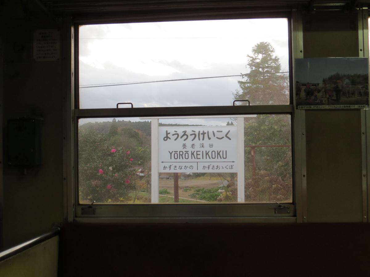f:id:hikarireinagatsuki:20201129145628j:plain