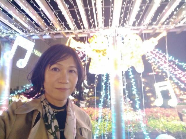 f:id:hikarireinagatsuki:20201129172446j:image