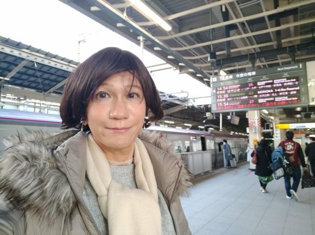 f:id:hikarireinagatsuki:20201206230613j:image