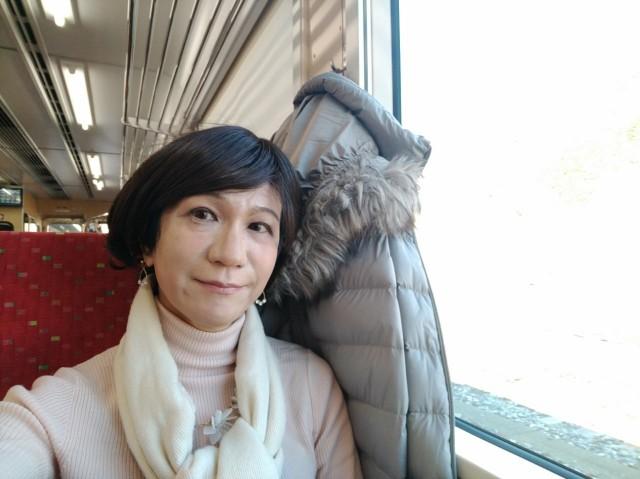 f:id:hikarireinagatsuki:20201206232026j:image