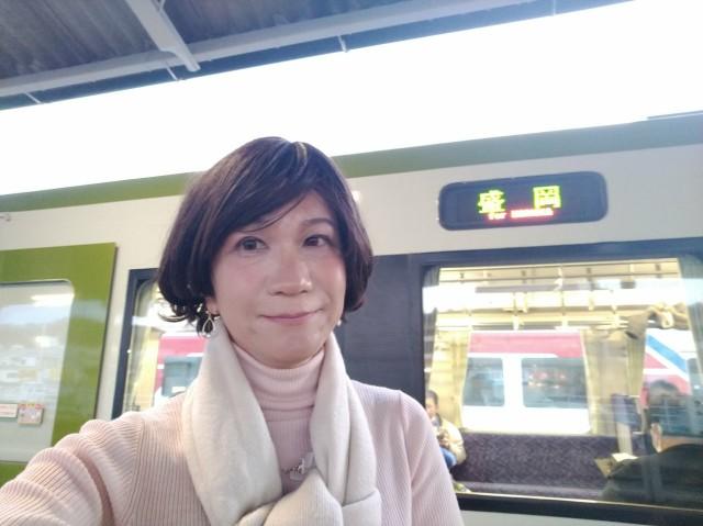 f:id:hikarireinagatsuki:20201206232701j:image