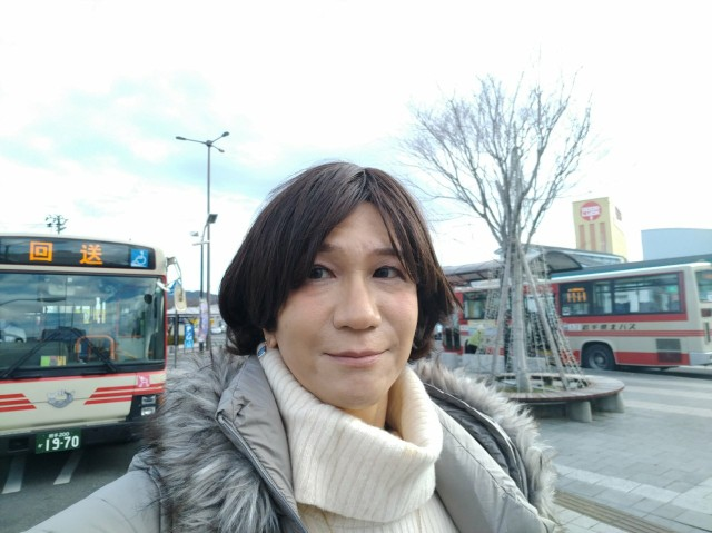f:id:hikarireinagatsuki:20201207092857j:image