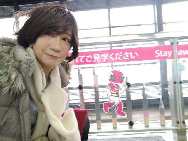 f:id:hikarireinagatsuki:20201210082030j:image