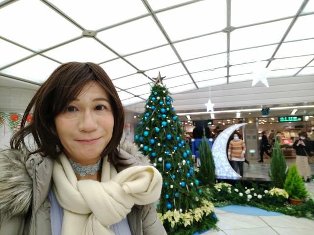 f:id:hikarireinagatsuki:20201213130155j:image