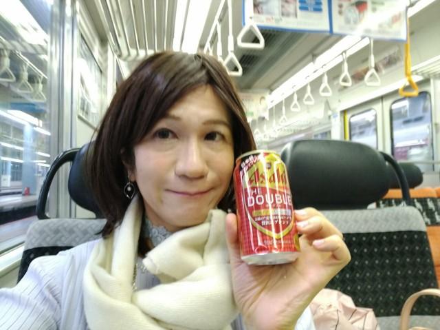 f:id:hikarireinagatsuki:20201213130435j:image