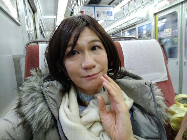f:id:hikarireinagatsuki:20201213130500j:image