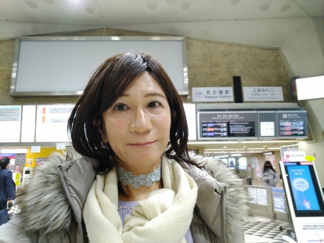 f:id:hikarireinagatsuki:20201213130513j:image