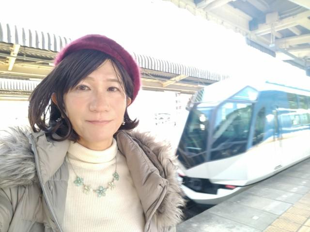 f:id:hikarireinagatsuki:20210101132038j:image