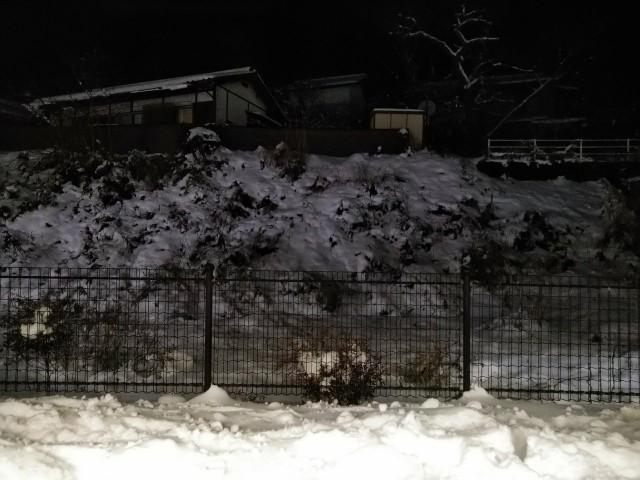 f:id:hikarireinagatsuki:20210105081812j:image