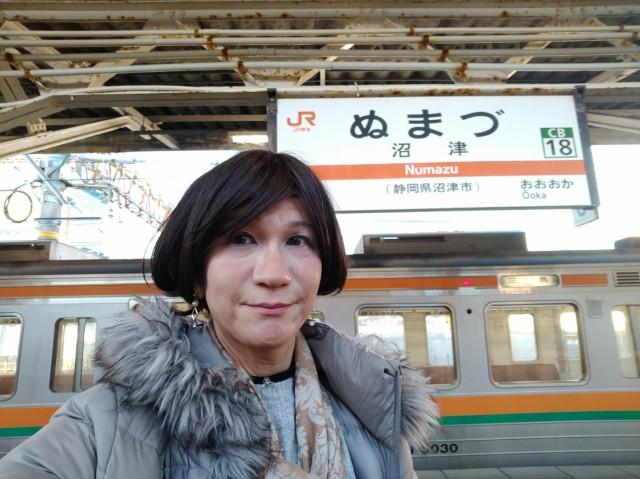 f:id:hikarireinagatsuki:20210111002807j:image