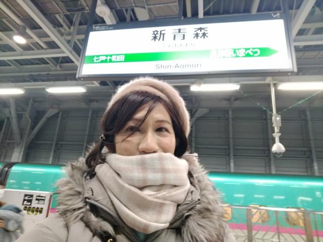 f:id:hikarireinagatsuki:20210124100423j:image
