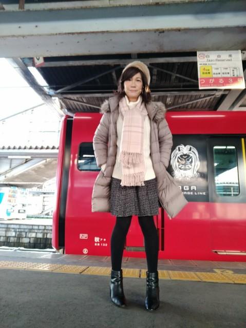 f:id:hikarireinagatsuki:20210124113252j:image