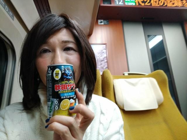 f:id:hikarireinagatsuki:20210124115819j:image