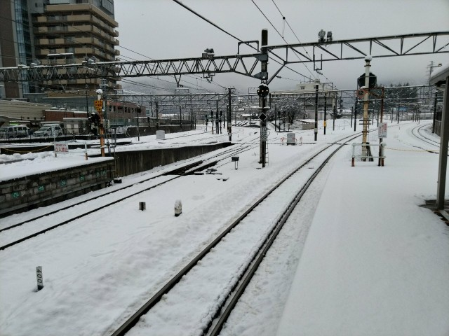 f:id:hikarireinagatsuki:20210124121803j:image