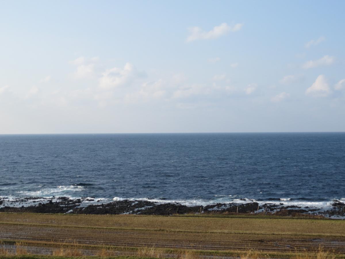 f:id:hikarireinagatsuki:20210128191846j:plain