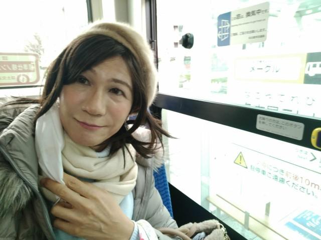 f:id:hikarireinagatsuki:20210202101005j:image