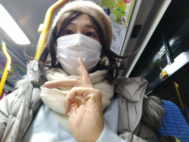 f:id:hikarireinagatsuki:20210202101316j:image