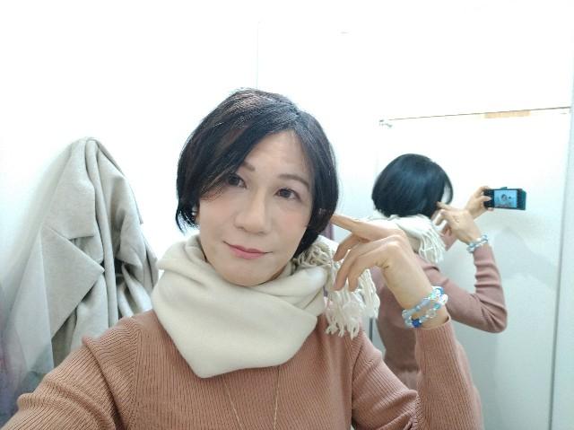 f:id:hikarireinagatsuki:20210207135153j:image