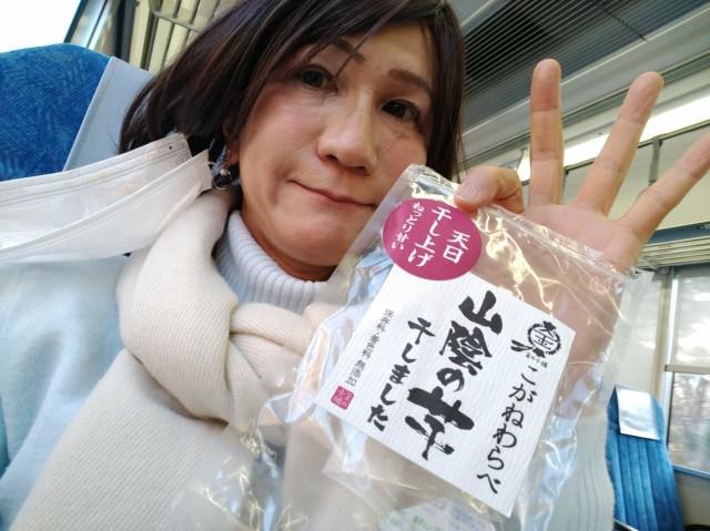 f:id:hikarireinagatsuki:20210216190810j:image