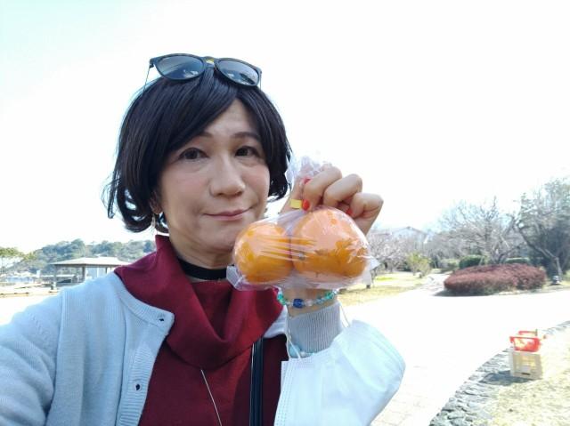 f:id:hikarireinagatsuki:20210227001230j:image
