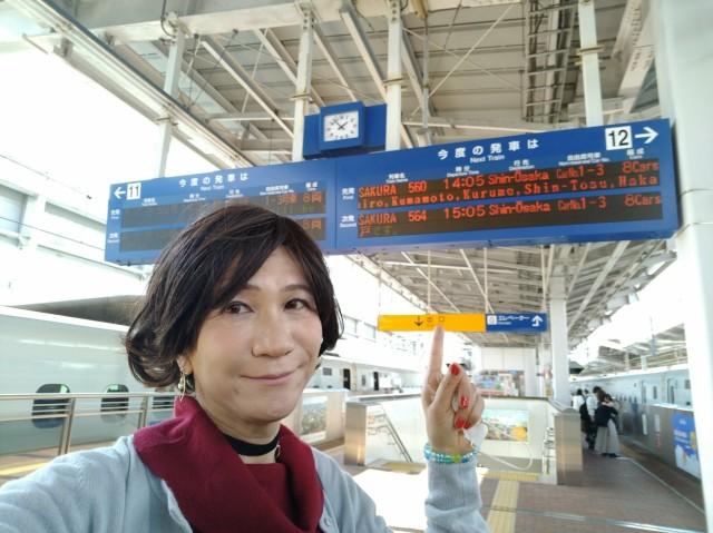 f:id:hikarireinagatsuki:20210227003002j:image