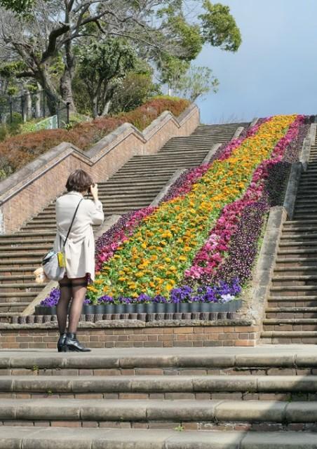 f:id:hikarireinagatsuki:20210309101550j:image