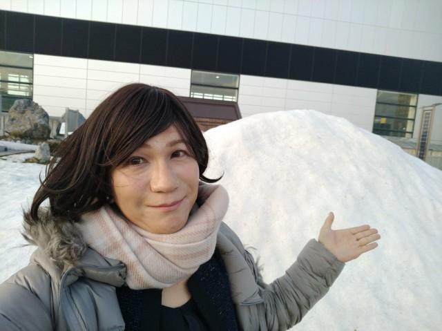 f:id:hikarireinagatsuki:20210314234708j:image